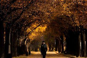 Mê đắm cảnh sắc mùa thu chớm đông tuyệt đẹp khắp thế giới
