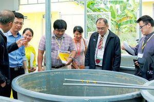 Thêm 2 chương trình tham gia kiểm định chất lượng quốc tế ở ĐH Trà Vinh