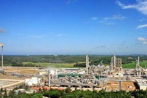 Thủ tướng phê duyệt chủ trương đầu tư 2 nhà máy điện khí 36.000 tỷ đồng dẫn nguyên liệu từ mỏ Cá Voi Xanh