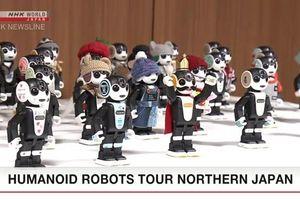 Robot hình người của Nhật Bản tự đi thăm quan