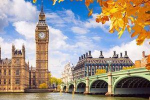39 người chết ở Anh: Quảng cáo xuất ngoại...tự dưng biến mất