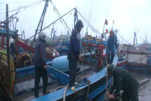 Quảng Ngãi có hơn 1.500 tàu cá vào bến trú bão