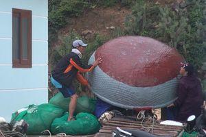 Bình Định: Sẵn sàng ứng phó với bão số 5