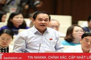 Cử tri Hà Tĩnh tha thiết đề nghị Chính phủ báo cáo Bộ Chính trị cho kết thúc dự án mỏ sắt Thạch Khê