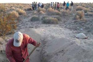 Nhóm bà mẹ tìm con phát hiện hố chôn tập thể 42 người