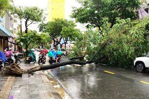 'Văn bản khẩn' cho HS Đà Nẵng nghỉ học do mưa bão là giả