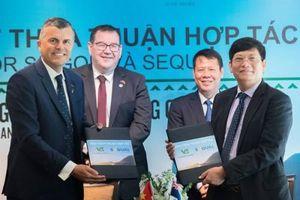 New Zealand đẩy mạnh xuất khẩu gỗ thông sang Việt Nam
