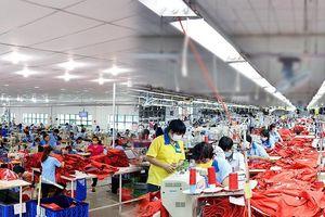 Garmex Saigon (GMC): Lợi nhuận quý 3 giảm 65%, cổ phiếu lao dốc mạnh