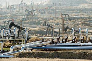 Giá xăng dầu hôm nay 1/11 vẫn trên đà giảm giá mạnh