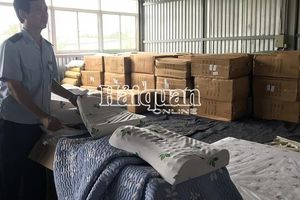 Hải quan TPHCM bắt giữ 1 container gối, nệm cao su nhập khẩu giả nhãn mác Việt Nam