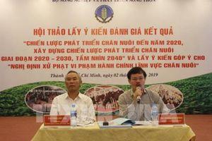 Phát triển ngành chăn nuôi gắn với chế biến sâu và xuất khẩu