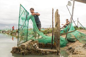 Bão số 5 cuốn hàng trăm lồng nuôi cá, dân Phú Yên trắng tay