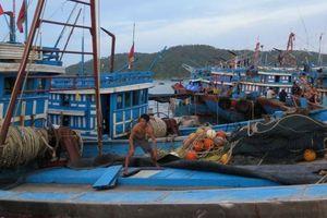 Quy định về đổi bằng tàu cá sang phương tiện thủy có gì mới?