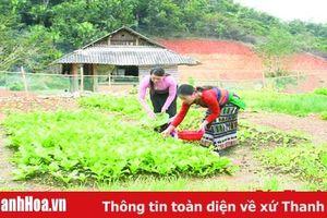 Bài 1: Xin thoát nghèo để nhường suất hỗ trợ cho hộ khó khăn hơn