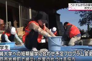 Truyền hình Nhật Bản khen ngợi du học sinh Việt tham gia cứu trợ sau siêu bão