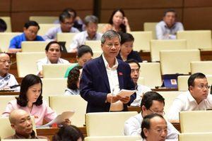 ĐBQH: Xử nghiêm người Trung Quốc phạm tội ở Việt Nam
