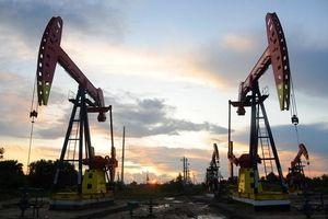 Giá xăng dầu hôm nay 4/11 quay đầu giảm