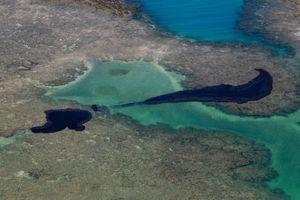 Sự cố tràn dầu ở bờ biển Brazil: 'Điều tồi tệ nhất vẫn chưa xảy ra'