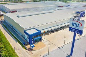 Ngoài khoản 34% cổ phần tại nhà máy nước Sông Đuống, Tập đoàn WHA còn đầu tư gì tại Việt Nam?