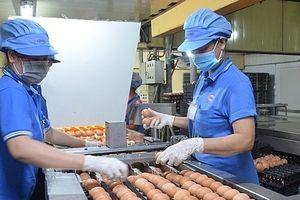 Phát triển ngành chăn nuôi khép kín để đáp ứng nhu cầu của thị trường