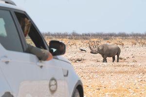 Lái thử xe sang Land Rover tại Hà Nội, cơ hội đi châu Phi