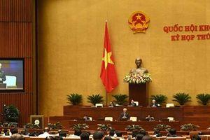 Ý kiến đóng góp từ các Đại biểu Quốc hội giúp cho Dự án Luật Thư viện hoàn thiện hơn