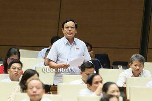 Chánh án TAND Tối cao trả lời vụ bán gỗ tang vật ở Quảng Trị