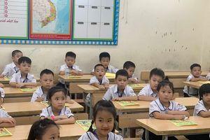 Vì sao học sinh lớp 2 đã phải học thống kê, xác suất?
