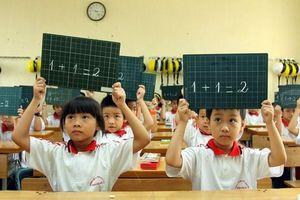 Vì sao cần đưa xác suất – thống kê vào toán lớp 2?