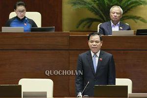Bộ trưởng Nông nghiệp: Mong dân thông cảm nếu giá lợn tăng