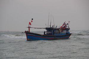 Liên hệ Philippines cho nhiều tàu cá Việt Nam neo đậu tránh bão số 6