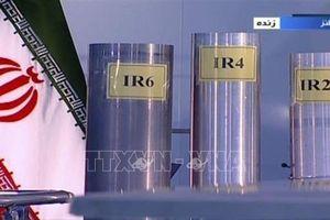 Iran bắt đầu bơm khí urani vào các máy ly tâm ở Fordow