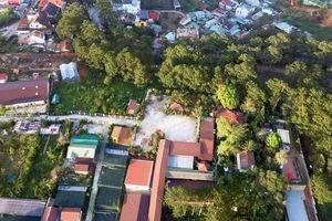 Ngang nhiên xây dựng nhà hàng không phép, lấn chiếm 1.884m2 đất rừng