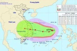 Tin mới nhất bão số 6: Tăng cấp nhanh, quay đầu hướng về Việt Nam