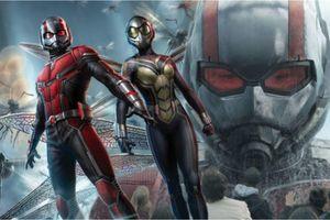 'Ant-Man 3' cần giải quyết hai vấn đề của loạt phim nếu muốn thành công!