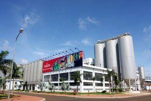 Bia Sài Gòn – Miền Trung (SMB) tạm ứng cổ tức 35% bằng tiền mặt