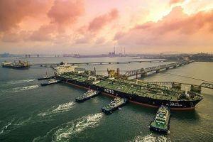 Yếu tố nào khiến giá dầu cao trong tháng 11