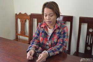Nữ quái lừa 2 người Trung Quốc về Nghệ An, dùng bình xịt cướp bọc tiền