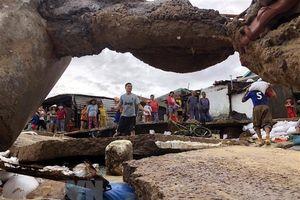 Người dân Bình Định chịu thiệt hại hàng trăm tỷ đồng sau cơn bão số 5