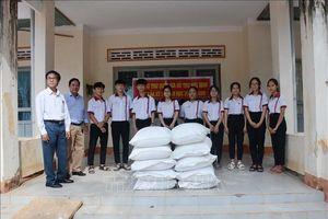 Hỗ trợ hơn 763 tấn gạo cho học sinh vùng khó khăn tỉnh Đắk Lắk