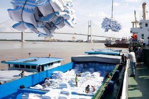 Doanh nghiệp Việt cần lưu ý gì khi xuất khẩu gạo sang Hồng Kông?