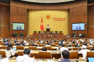 Phó Thủ tướng: Bộ Công Thương đã chủ động phối hợp với các tập đoàn kinh tế trong cung ứng điện