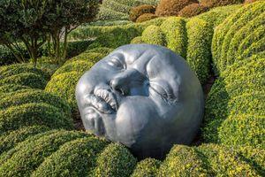 Khu vườn kỳ dị với loạt tảng đá hình mặt người