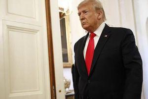 'Pháp luật tối thượng', ông Trump phải đền bù 2 triệu USD