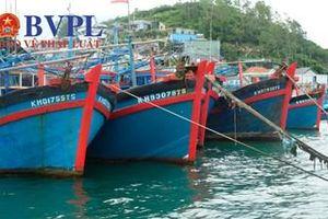 Các tỉnh Nam Trung bộ tập trung ứng phó với bão số 6