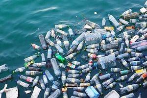 Thảm họa 'ô nhiễm trắng' đe dọa môi trường