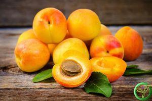Loại quả màu vàng nhiều người chê 'chua loét' hóa ra dùng để trị ho hay viêm họng, đau răng lại cực nhanh và tiện