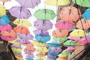 Những chiếc ô làm đẹp phố phường