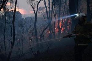 Giặc lửa hoành hành miền Đông Australia
