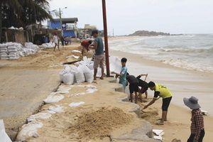 Bình Định: Cấp 53.000 bao cát giúp người dân ứng phó với bão
